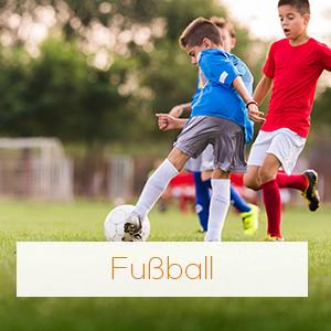 Kategorie Fussball