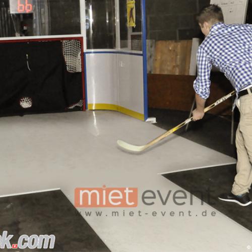 Eishockey Simulator mieten
